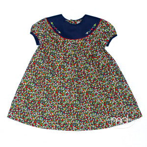 Sophie & Lucas Toddler Girl's Fall Floral Dress Embroidered Collar