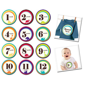 Sticky Bellies Wild One Baby Growth Stickers - Madison-Drake Children's Boutique