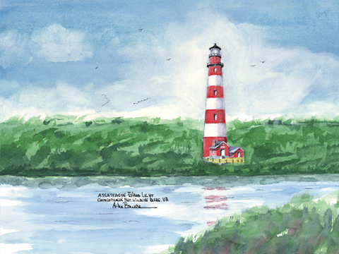 VIRGINIA Lighthouses- See all 3 Lighthouses!