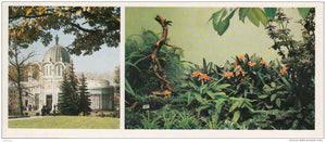 Young Naturalists Pavilion - Flowers Grown by Young Naturalists - VDNKh - Moscow - 1986 - Russia USSR - unused - JH Postcards