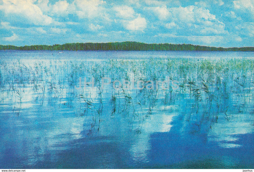 The Gauja National Park - Unguru Lake - 1976 - Latvia USSR - unused - JH Postcards