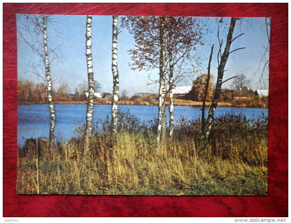 Lake Külajärv at Vellavere - birch trees - Estonian lakes - 1979 - Estonia - USSR - unused - JH Postcards