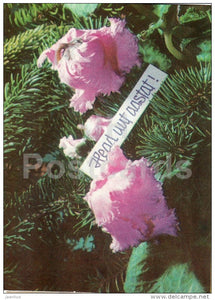 New Year greeting Card - flowers - 1971 - Estonia USSR - used - JH Postcards
