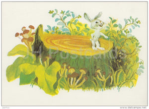 illustration by Y. Chernyatin - hare - Don´t Cry Mushroom by D. Mrazkova - fairy tale  - 1979 - Russia USSR - unus - JH Postcards