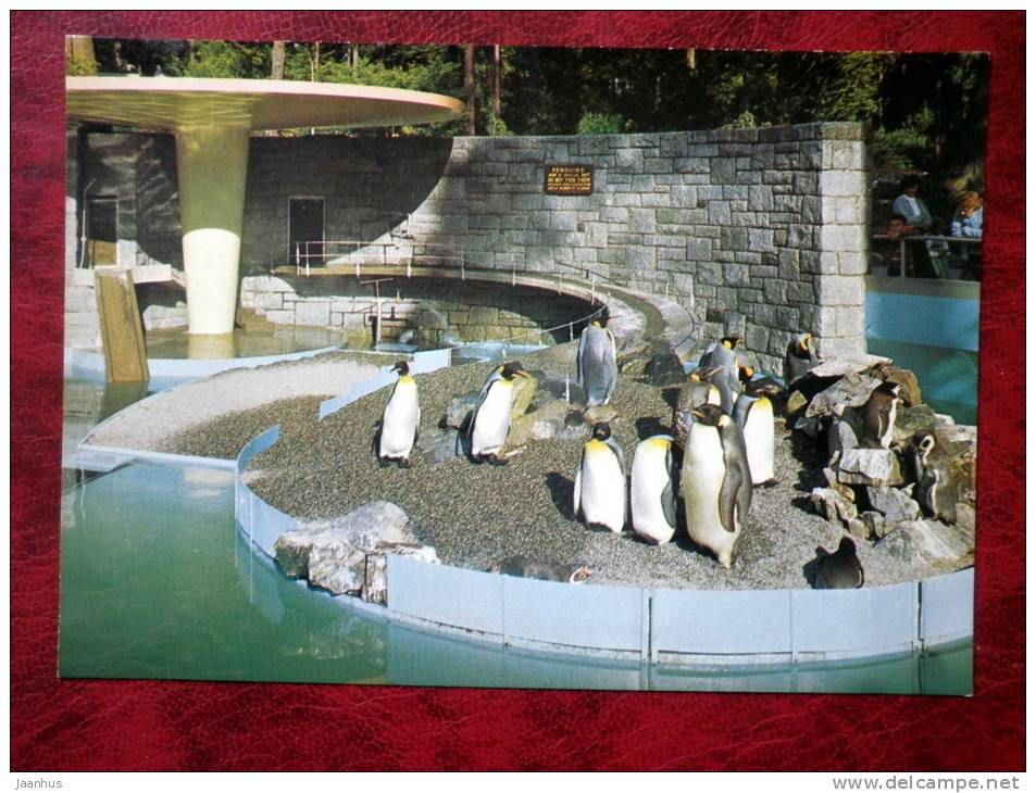 Penguins in Stanley Park - Vancouver - British Columbia - Canada - unused - JH Postcards