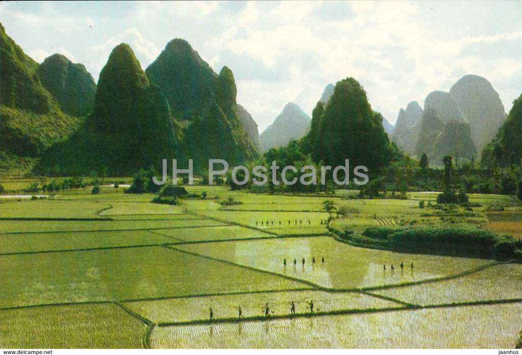 Kweilin - Guilin - Garden like rice fields at Chuanyen - 1973 - China - unused