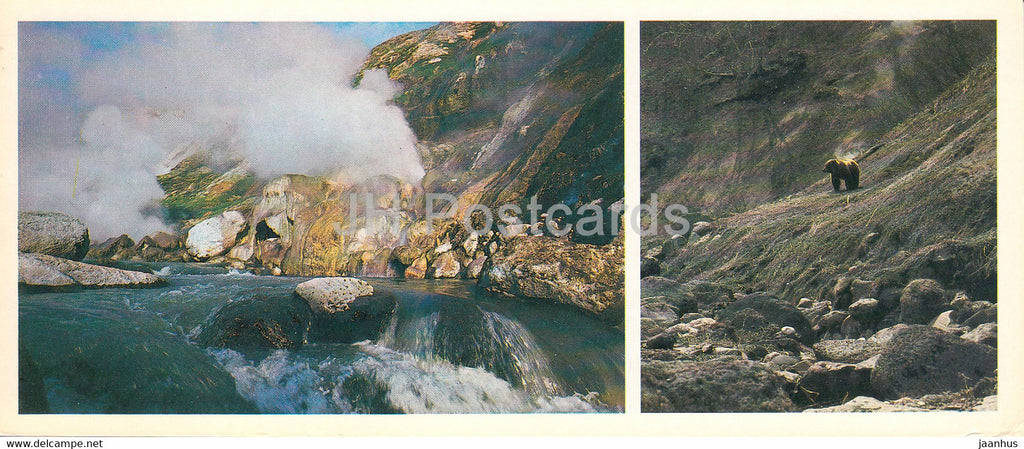 Kamchatka - in the valley of geysers - bear - 1981 - Russia USSR - unused - JH Postcards