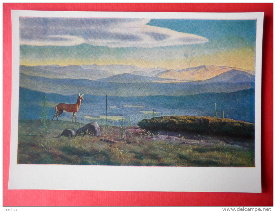 painting by Rockwell Kent - Valley in the Adirondack Mountains . Northern Greenland . 1950 - deer - art of USA - unused - JH Postcards