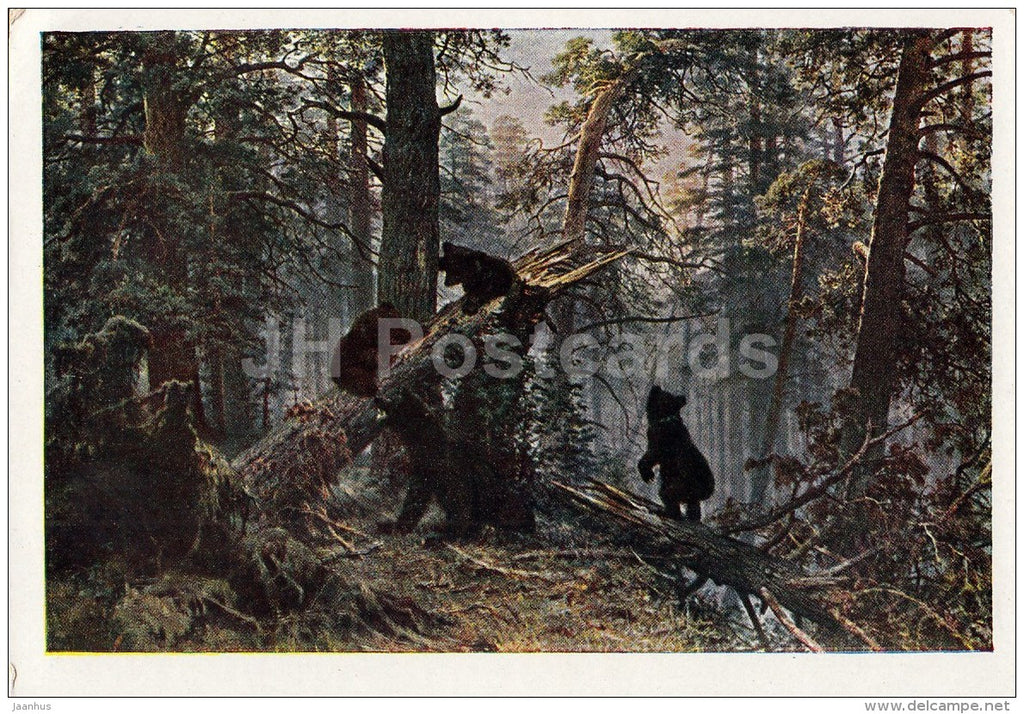 painting by I. Shishkin - 1 Morning in a Pine Forest , 1889 - bear - Russian art - Russia - 1961 - Russia USSR - unused - JH Postcards