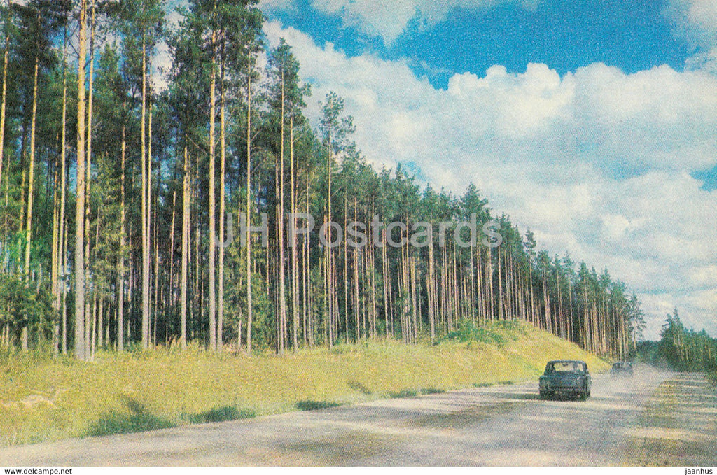 The Gauja National Park - Pine Forest - 1976 - Latvia USSR - unused - JH Postcards