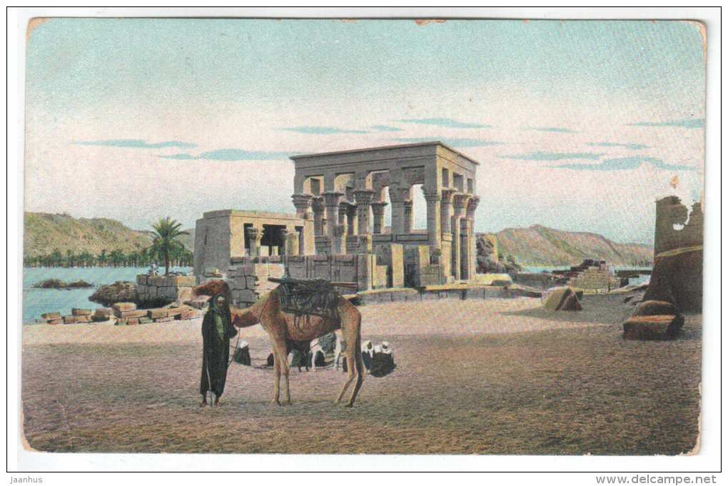 Temple ruins - camel - T. E. L. 945 - Egypt - old postcard - used - JH Postcards