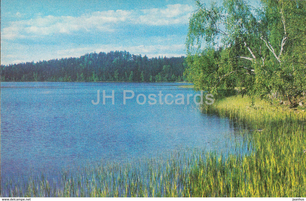 The Gauja National Park - Raiskuma Lake - 1976 - Latvia USSR - unused - JH Postcards