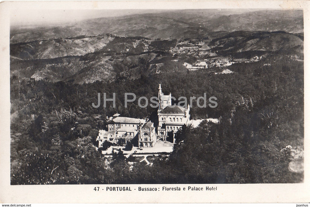 Bussaco - Floresta e Palace Hotel - 47 - old postcard - Portugal - unused - JH Postcards