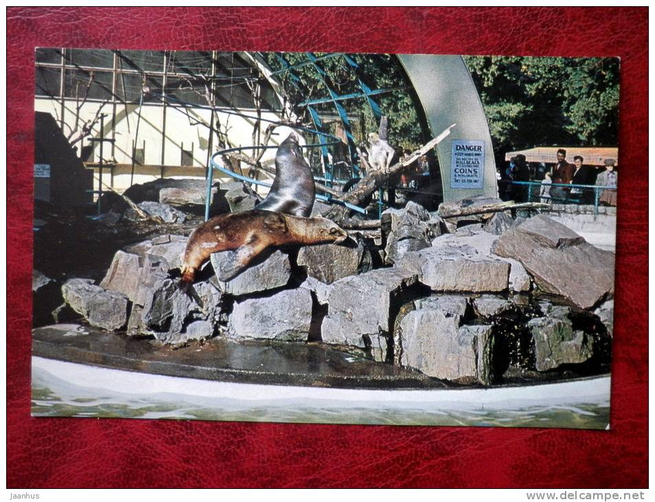 Monkeys, Seals and Sea Lions in Stanley Park - Vancouver - British Columbia - Canada - used - JH Postcards