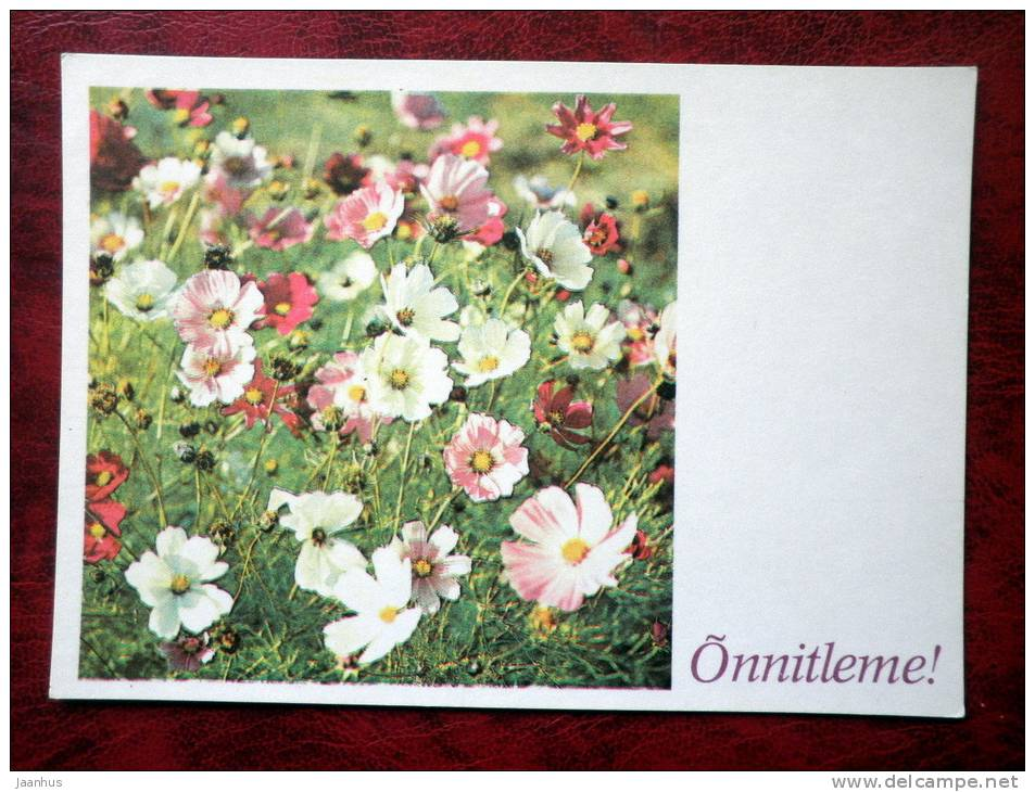 Greeting card - summer flowers - 1981 - Estonia - USSR - unused - JH Postcards