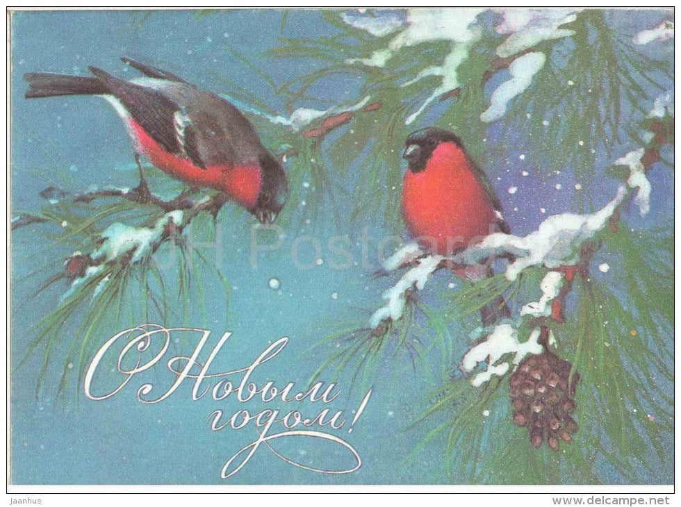 New Year greeting card - by A. Isakov - bullfinches - birds - 1985 - Russia USSR - unused - JH Postcards
