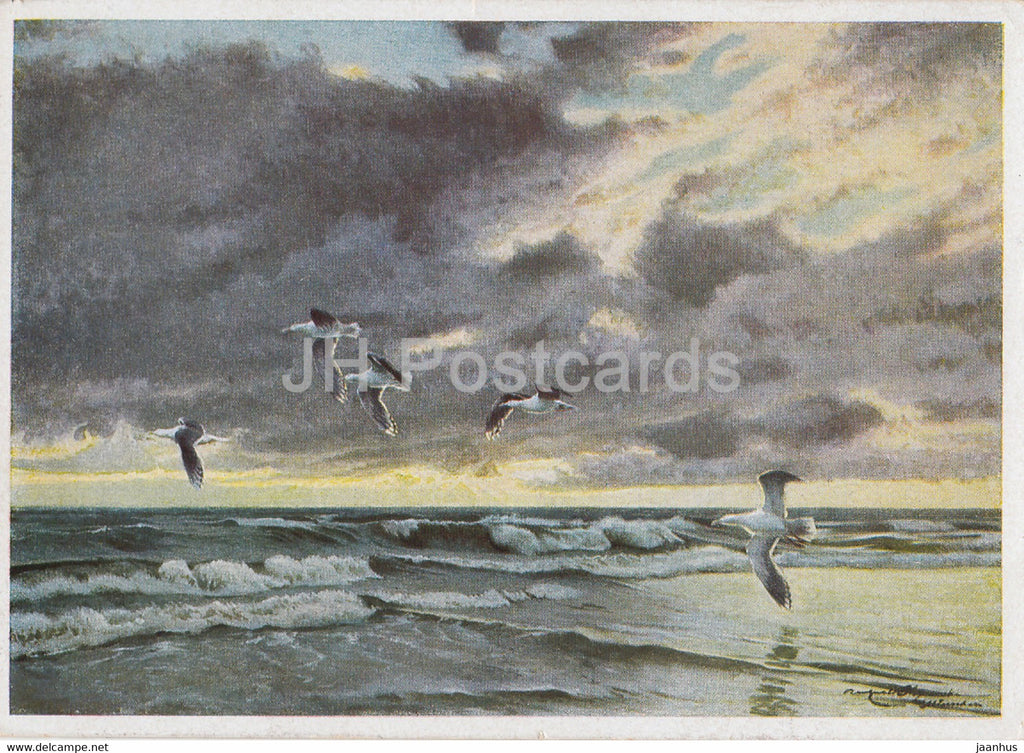 painting by Karl Ewald Olszewski - Mantelmoven nach dem Gewitter - gull - birds - German art - Germany - unused - JH Postcards