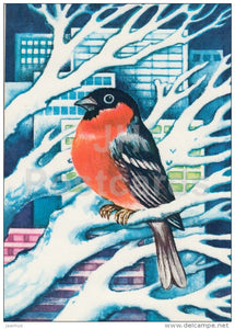 New Year Greeting card by S. Väljal - 1 - bullfinch - birds - 1977 - Estonia USSR - used - JH Postcards