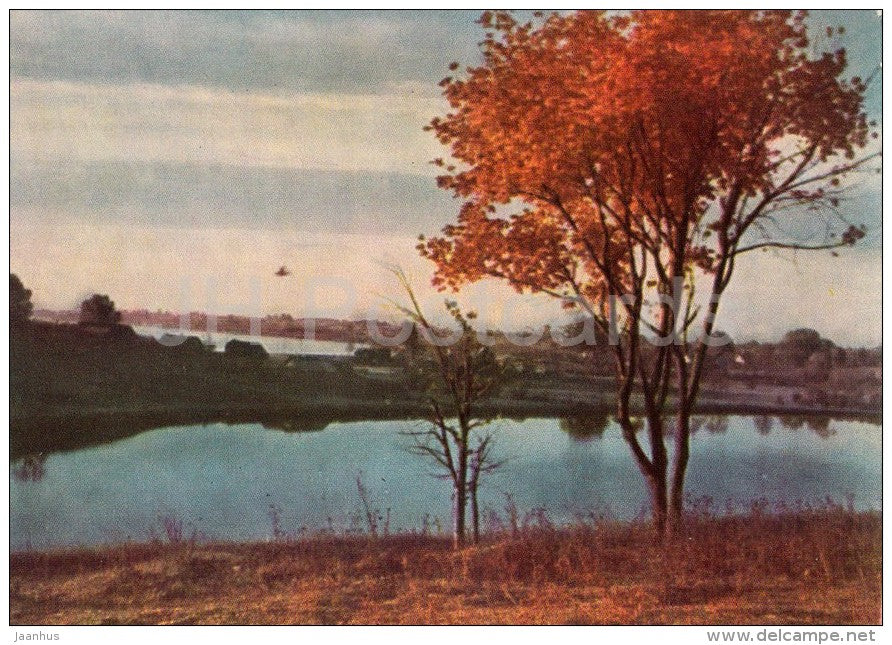 Daugu lake - old postcard - Lithuania USSR - unused - JH Postcards