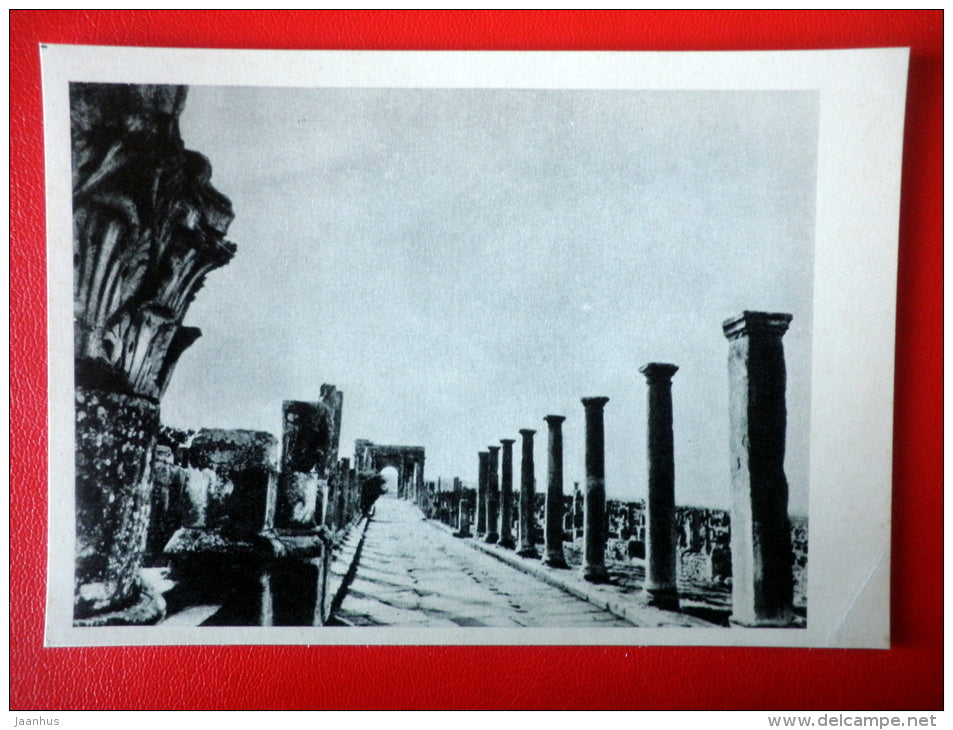 Street In Timgad in Algeria , inner view , II century AD - Architecture of Ancient Rome - 1965 - Russia USSR - unused - JH Postcards