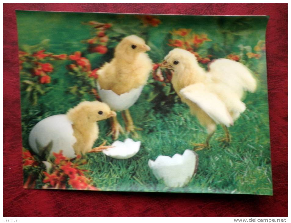 Switzerland - 3D - stereo - easter - chiken - eggs - sent in Finland - used - JH Postcards