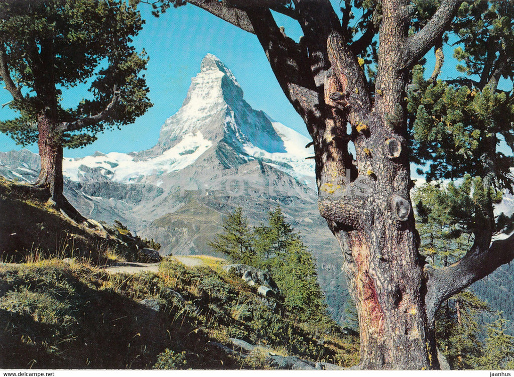 Zermatt - Riffelalp mit Matterhorn 4476 m - 9085 - Switzerland - used - JH Postcards