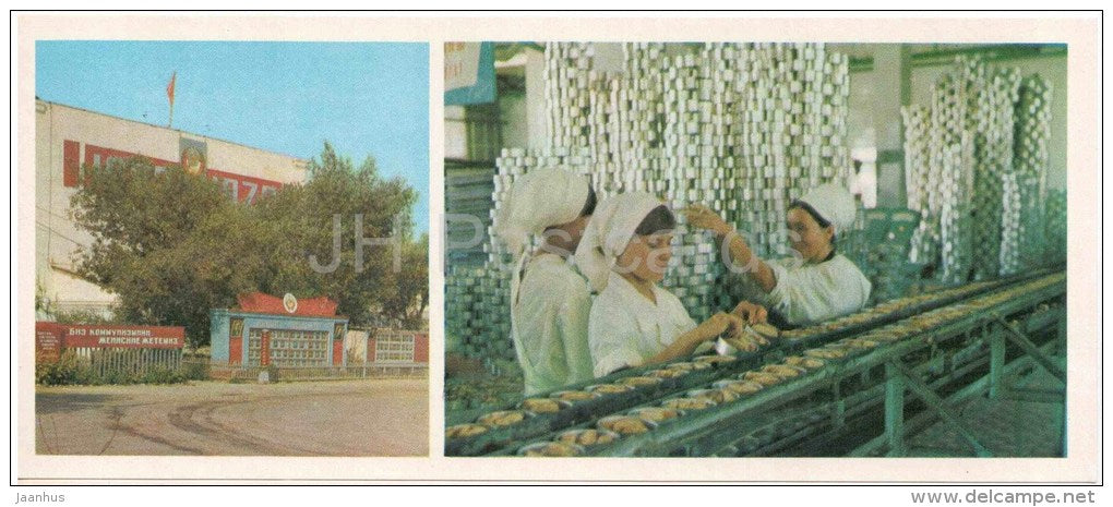 Fish Cannery - Muynak - Karakalpakstan - 1974 - Uzbekistan USSR - unused - JH Postcards