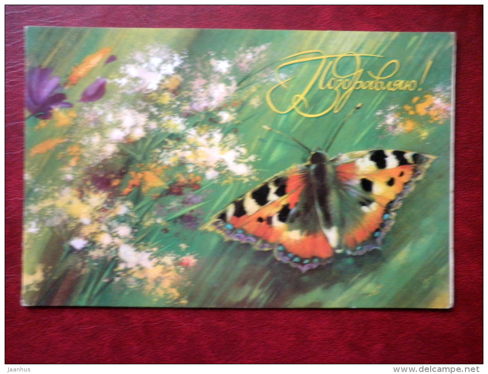 Greeting card - by N. Korobova - butterfly - daisies - cornflowers - 1984 - Russia USSR - used - JH Postcards