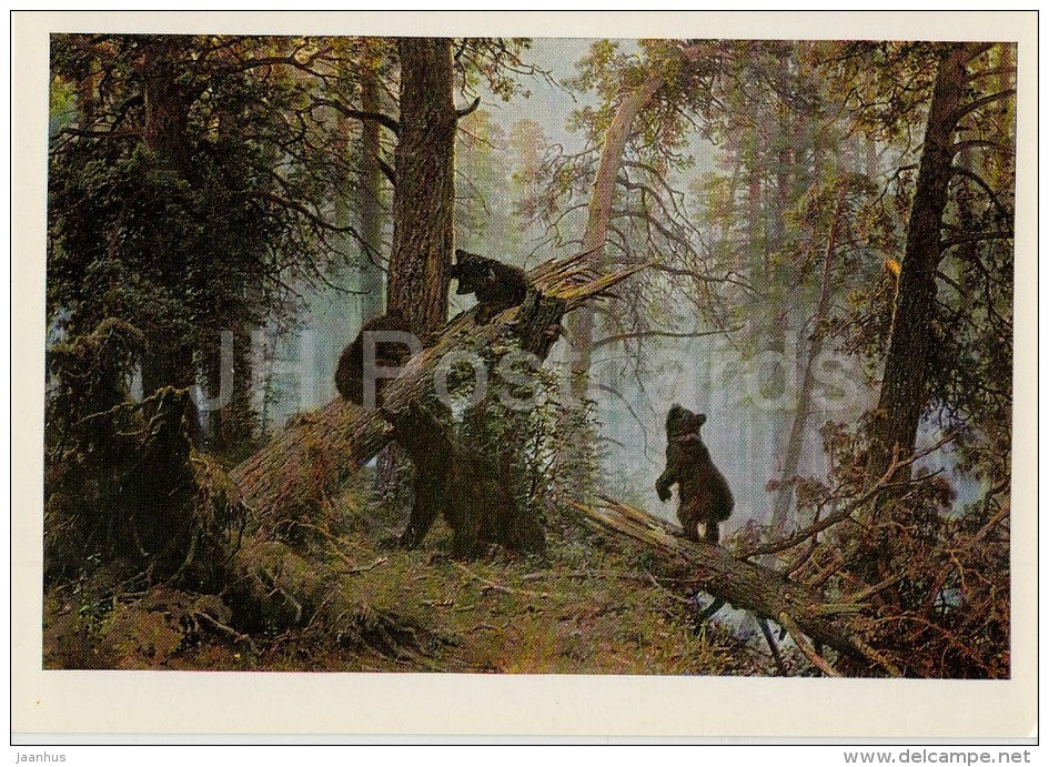 painting by I. Shishkin - Morning in the Pine Forest , 1889 - bear - Russian art - 1974 - Russia USSR - unused - JH Postcards