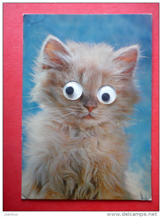 cat - kitten with moving eyes - Italy - circulated in Finland - JH Postcards