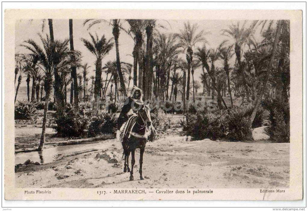 Cavalier dans la palmeraie - rider in the palm grove - Marrakesh - Marrakech - Morocco - old postcard - used - JH Postcards
