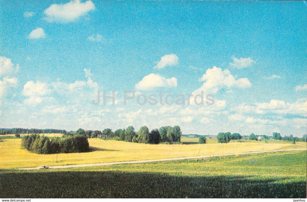 The Gauja National Park - View near Cesu Limbazu Road - 1976 - Latvia USSR - unused - JH Postcards