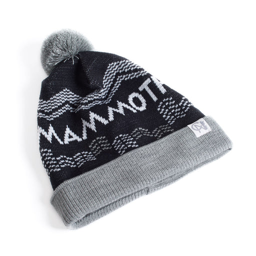 Mammoth Skibourhoods Toque
