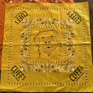 "Yellow bandana, ""Cliff's Scoop Shop"", Clifford the dog's face in the center"