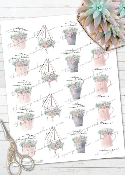 printable succulent plant watering reminder stickers