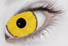 Cosplay Mini Sclera 17mm