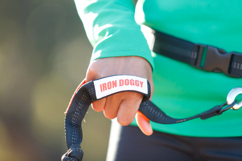 Iron Doggy Holiday Gift Guide