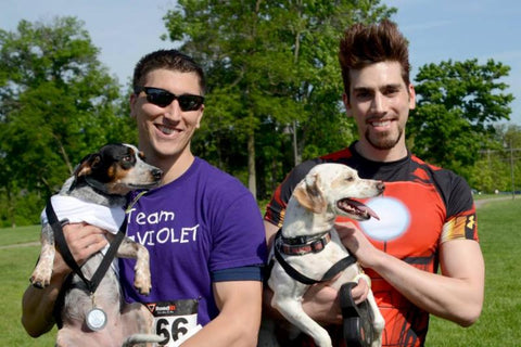 Dash for the Dogs 5k