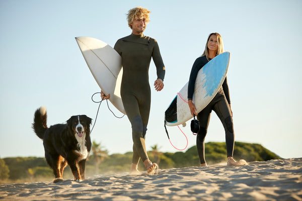 Couple holding surfboards and enjoying beach games with their dog.