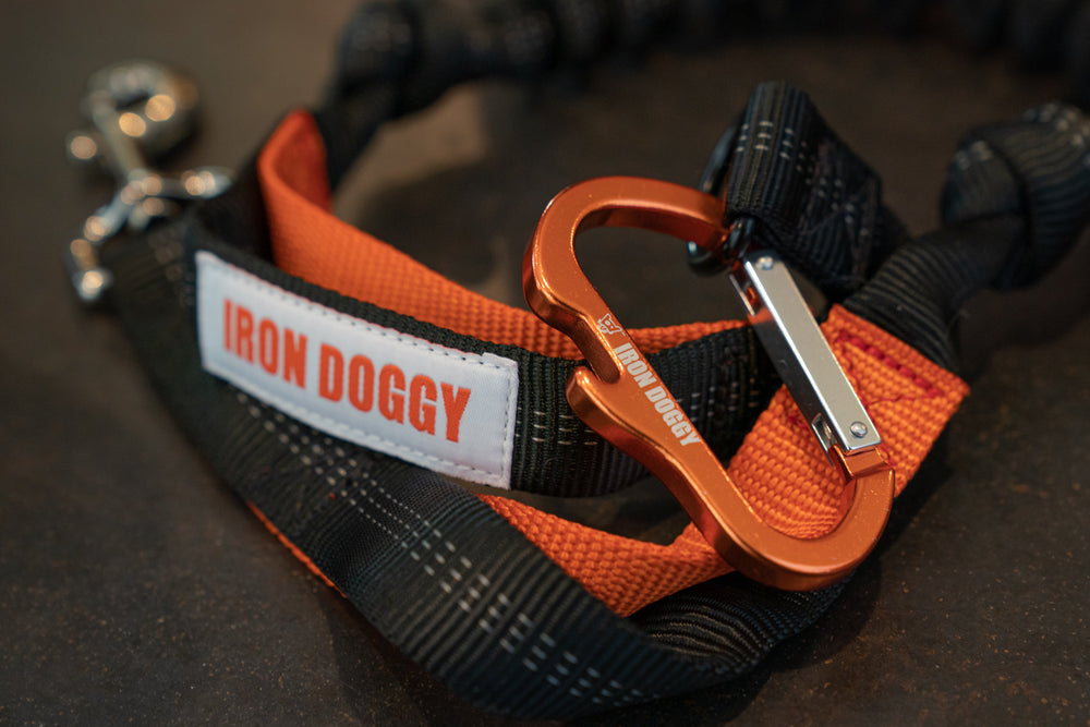 Iron Doggy-Sidekick-Hands Free Leash with Orange Carabiner