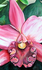 Pink Orchid Gift Card