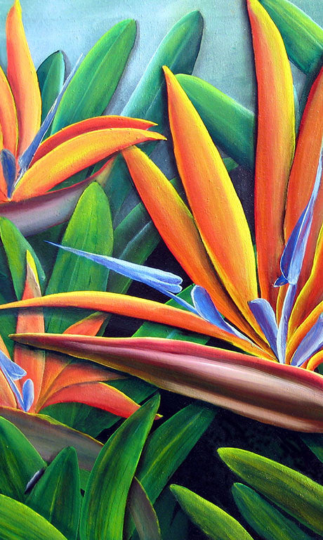 Multi Bird of Paradise Gift Card