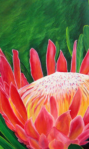 Queen Protea by deepa