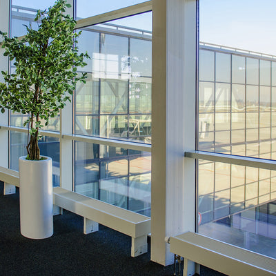 Commercial Window Tinting – TriState Sun Control