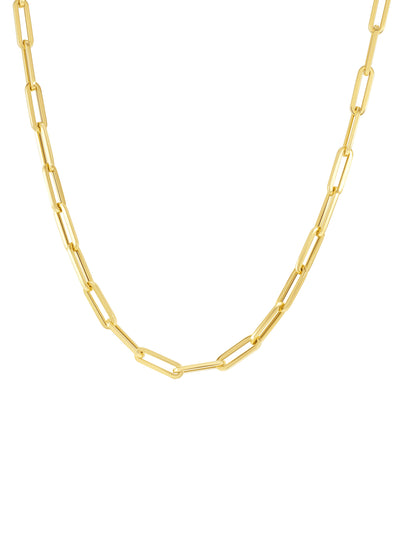 Paperclip 'S' Chain Necklace  14k Gold