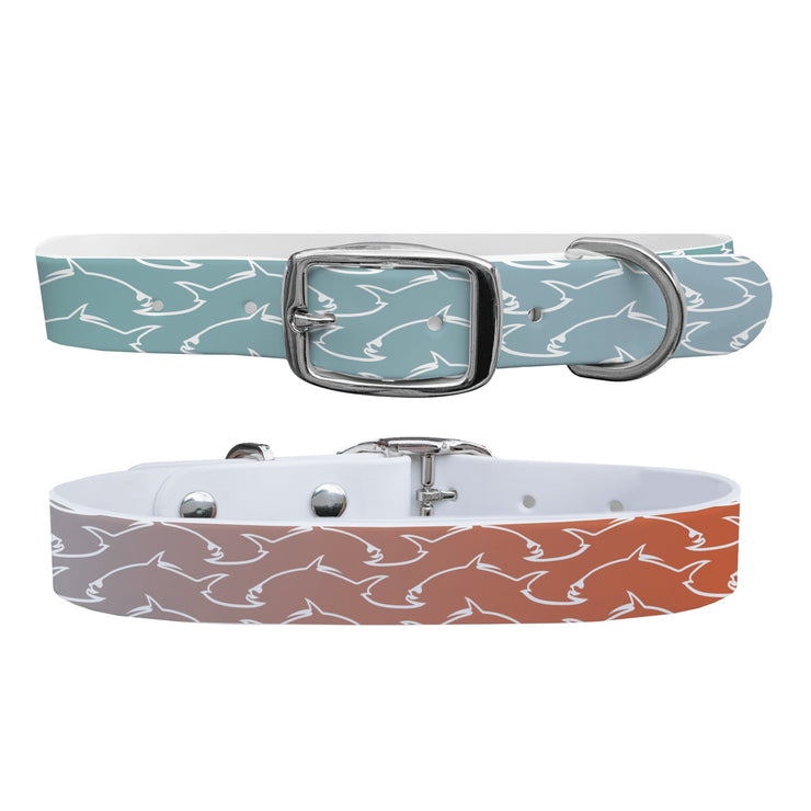 """Permit Fade"" Dog Collar - Covey and Paddle"