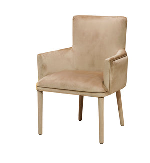 Contemporary  Upholstered Designer Occasional Chair - Gattopardo