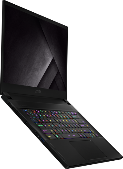 MSI GS66 Stealth 10SGS-036