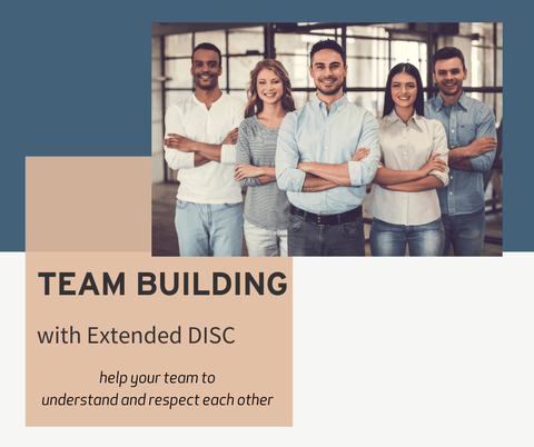 TEAM BUILDING with Extended DISC® 10 to 20 profiles