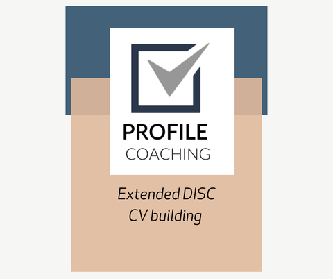 Extended DISC profile + CV package - profilecoaching
